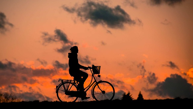 kolo s košíkem