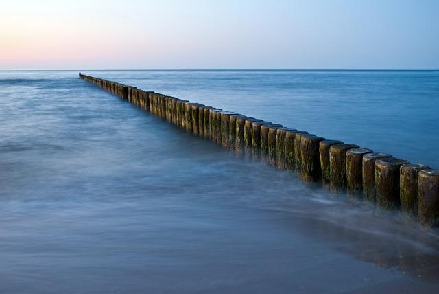 dřevo v moři