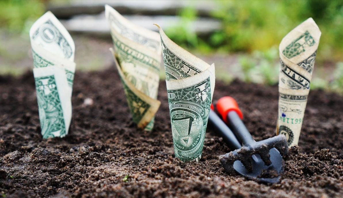 peníze v zemi